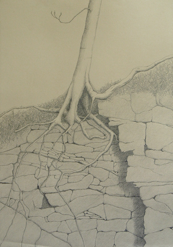 Kathy Strauss drawing, Exposed 1