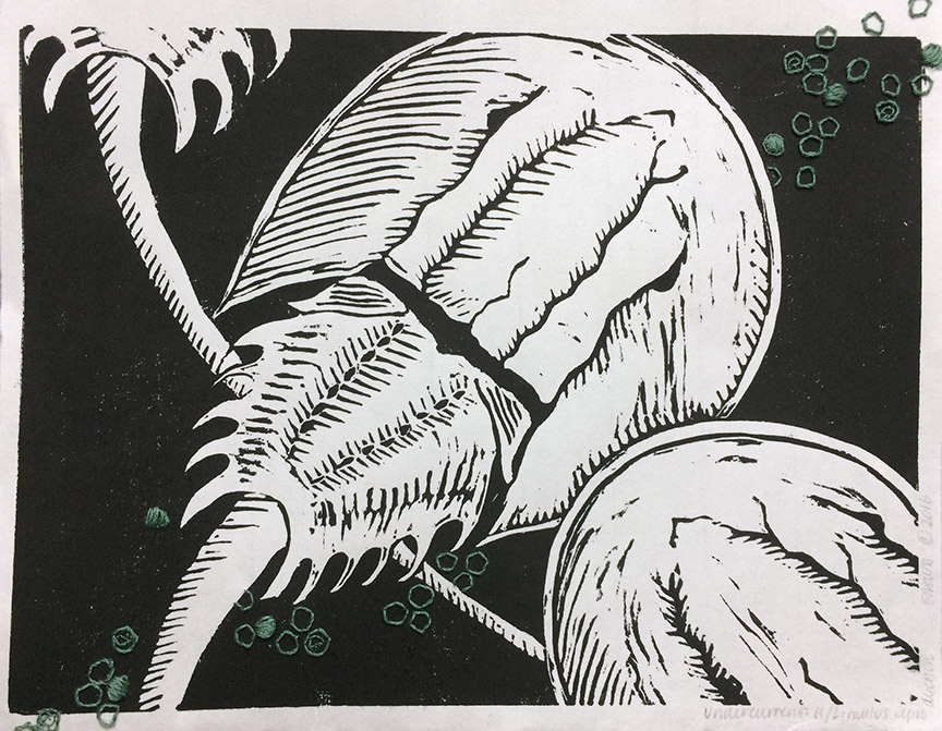 Kathy Strauss print, Undercurrents 11, Limulus Reproduction